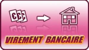 Virement bancaire online